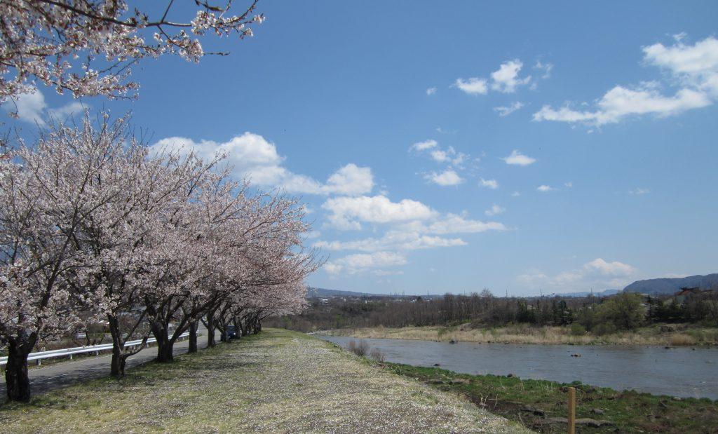along Chikumagawa near Unnnojuku , Nagano prefecture