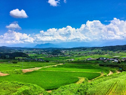typical summer of countryside in Japan from photoAC