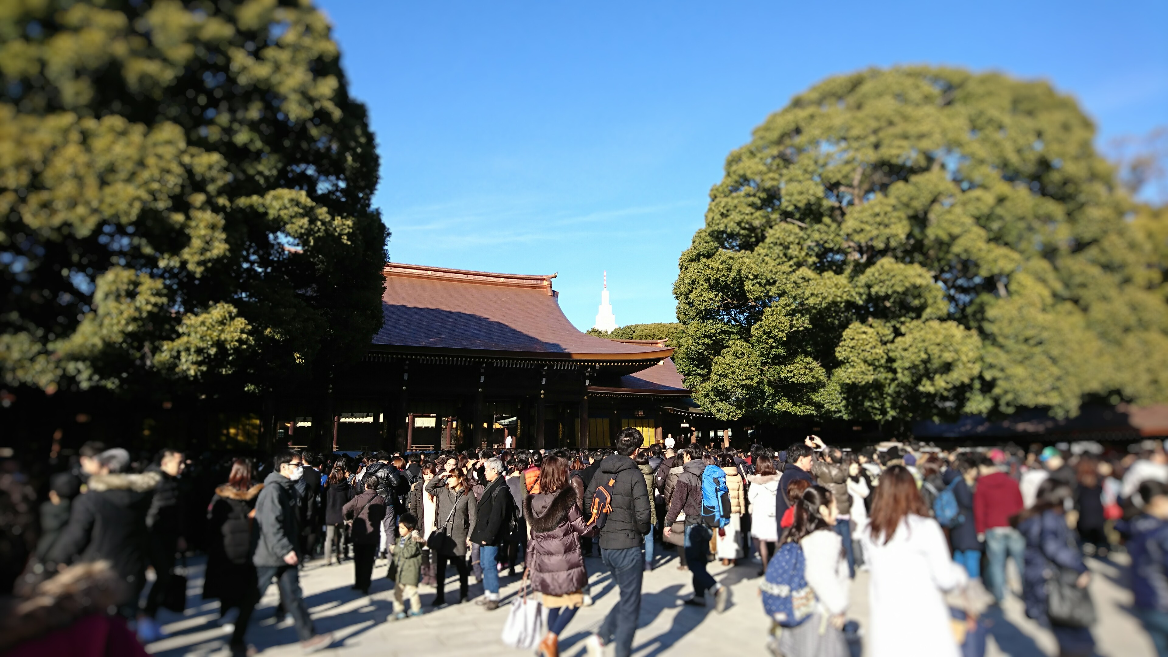 The main hall of Meiji Shirine in New Year 2018