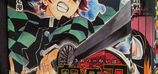 kimetsu-no-yaiba vol.10